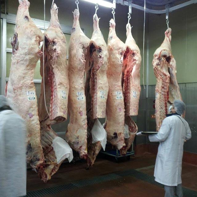 牛一は神戸肉流通推進協議会に加盟しております